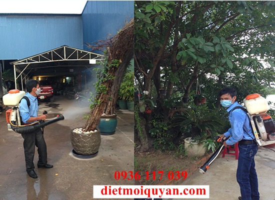Dịch vụ phun thuốc diệt muỗi