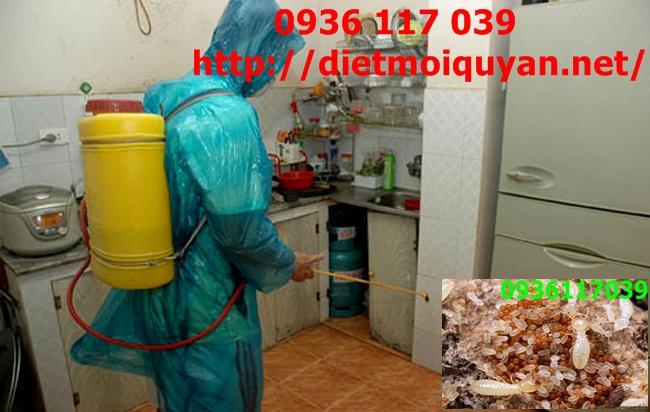 Dịch vụ phòng chống mối cho nhà ở tại Tân Bình
