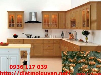 Diệt mối giá rẻ cho tủ bếp tại HCM